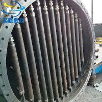 上海80平方烛式过滤机 筒体碳钢材质 316l滤芯