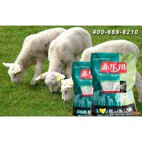 羔羊育肥期间结石的预防