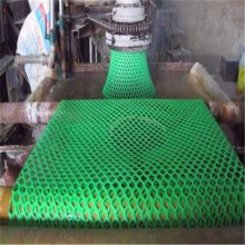 安平塑料平网 小鸡床垫漏粪网 养蚕塑料网