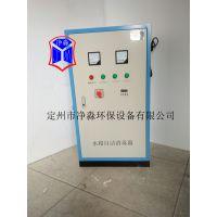 水箱自洁臭氧消毒器 优质供应