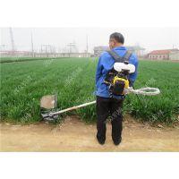 手推式割草机型号 自走式割草机 草坪养护设备