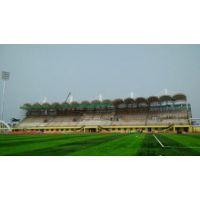 国内外体育场钢结构加工公司-三维钢构