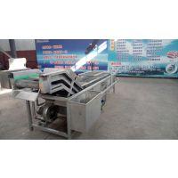 厂家可按产量定制 红枣清洗机 高效节能