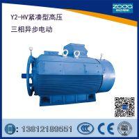 铸铁紧凑型10kV电动机Y2-HV 400-4-280KW 10KV电机ZODA