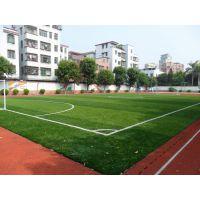 运动场人造草坪 人工草坪施工 价格优惠