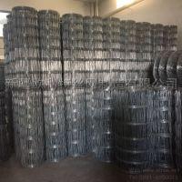 丝网厂家现货销售镀锌草原网 养殖栅栏牛栏网