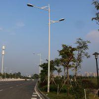 阳山县社区单臂路灯规格 室外道路灯铺装图片 金卤灯杆正规厂家