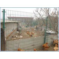 宁夏绿色卷状1.8米养殖铁丝网瑞才批发