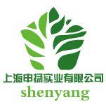 上海申扬实业有限公司