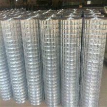 养殖电焊网批发 安平大丝电焊网 绿色铁丝网