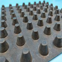 山东大量批发供应 塑料排水板5公分 地下车库顶板专用 欢迎电话咨询