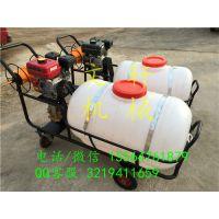 供应推车式远程高压苹果树喷雾器 后悬挂式喷雾器
