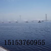 山东风清专利生产蒸发塘