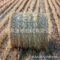 稻草圆捆机 自动捡拾秸秆打捆机价格 收割粉碎打捆一体机