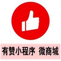 广州有赞营销中心小程序+公众号商城解决方案