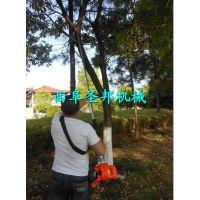 新型果树砍伐高枝锯 背负式伐木高枝锯 四冲程高枝锯批发