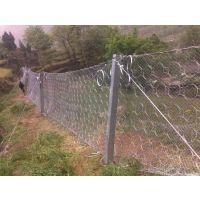 供应贵州被动边坡防护网厂家 瑞隆金属丝网