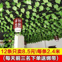 仿真花藤绿叶爬山虎藤条室内吊顶装饰假树叶葡萄叶塑料假花