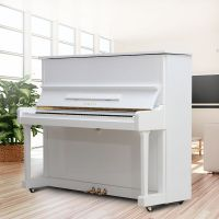河南郑州的乐器批发市场/钢琴/吉他/古筝等