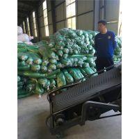 福瑞德 PE5针绿色工地防尘网批发联系:15131879580