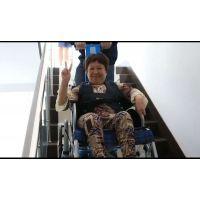 北京 崇文区面包车轮椅车升降台 启运电动爬楼车供应商 残疾人家用升降台