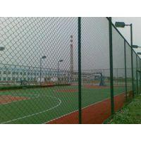 浸塑护栏网厂|框架护栏网|桥梁护栏网供应商