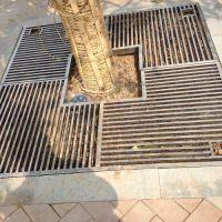 河北巨捷38*38*38绿化树坑盖板@三亚绿化树坑盖板厂家