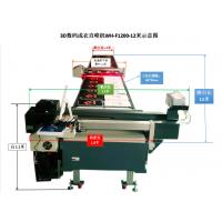 供应伟航WH-F1200BY12数码拔染印花机