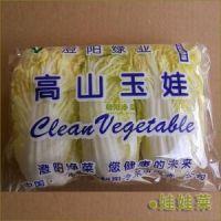佛山创利宝蔬菜伺服全自动食品包装机