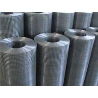 电焊网 喷塑电焊网 包塑电焊网