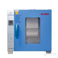 欧莱博电热恒温鼓风干燥箱DHG-9640A节日促销