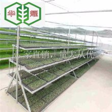 河北温室苗床-热镀锌移动苗床-回馈-至尊福利-超值低价-畅销全国