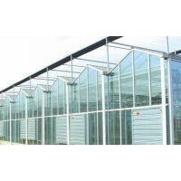双拱双膜温室大棚建设