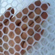 聚乙烯养鸡网 养鸡网材料 水产品养殖网