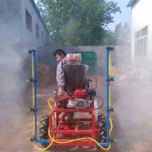 热销小型果园自走式打药机 多功能汽油机动喷雾机 志成150L果树杀虫喷药车