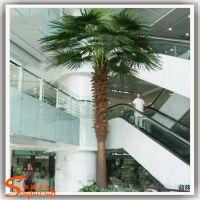 厂家直销仿真蒲葵树 商场室内外摆放仿真棕榈树