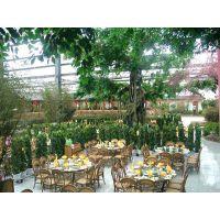 山东生态餐厅/生态餐厅/餐厅造价