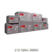 山特城堡系列蓄电池C12-100铅酸蓄电池报价