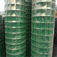 涂塑焊接网 养鸭子铁丝网 荷兰网立柱