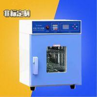 快速干热灭菌器 工件热处理设备 东莞工业烤箱 佳兴成厂家非标定制