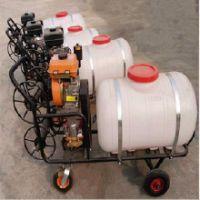 金佳背负式喷雾器 汽油机动力打药机 果树杀虫打药机