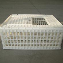 塑料大鸡筐 鸡用运输笼 推拉门 塑料鸡筐