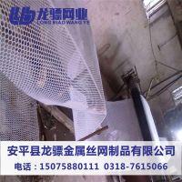 绿色塑料平网 养雏鸡专用塑料网 结实耐用养殖网