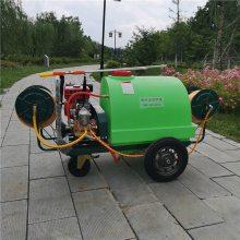 生产供应家用高压机动喷雾器远射程杀虫打药机果树喷药车