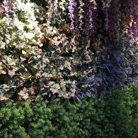 仿真植物墙一平方米要多少钱?绿琴厂家热销 人造塑料尤加利绿化装饰 家居酒店客厅装修假花假叶绢花定制