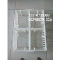 优质鸡苗箱批发 高抗塑料雏鸡筐 塑料鸡苗箱