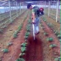 果园背负式锄草机 生产销售农用割草机