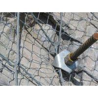 边坡防护网厂家,边坡防护网,旭强网业(在线咨询)