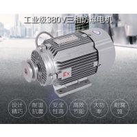 余龙380V750W防爆泵自吸加油泵三相电油泵汽柴油防爆电机厂家直销