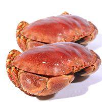 世能通大连面包蟹进口清关您不知道的事